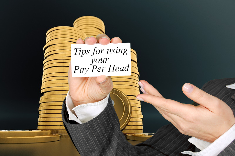 Tips for Using Your Pay Per Head Service to Market Your Bookie Business